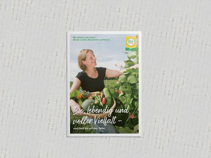 奥地利生物协会销售手册重新设计的相关图片