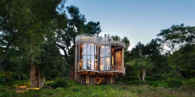 這座曲線優美的木屋坐落在樹林中