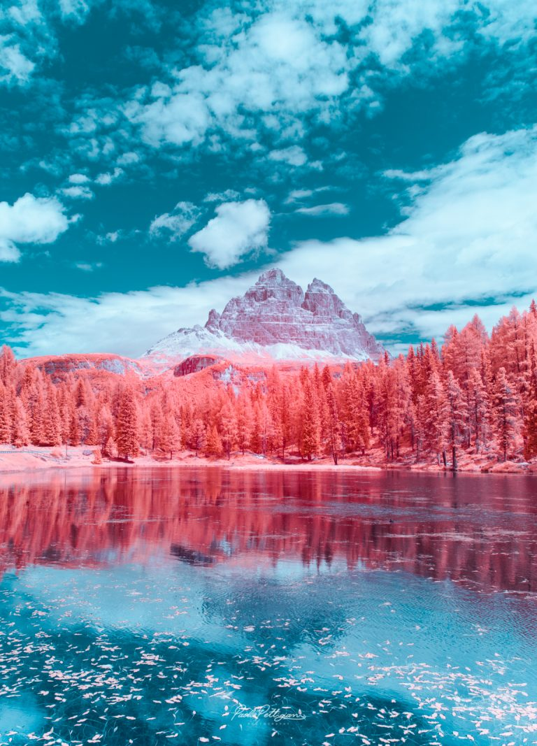Paolo Pettigiani拍攝棉花糖顏色的崎的相關圖片
