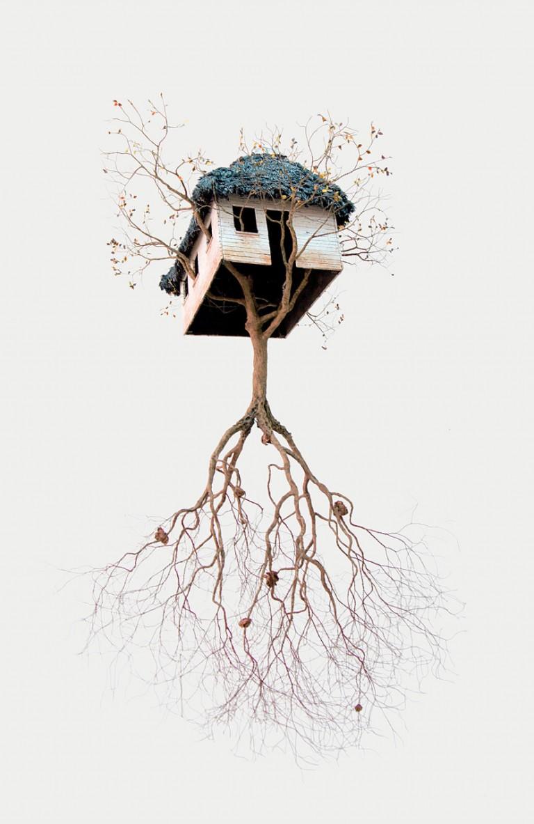 藝術家Jorge Mayet和他的樹木雕塑作的相關圖片
