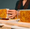 一种全新的蜂箱,为了改善城市环境设置