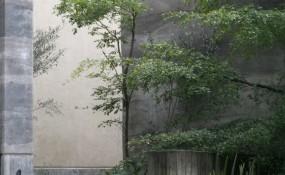 自然、雅致,墨西哥花園式別墅設計