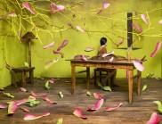 藝術家JeeYoung lee 創作狹小空間里的新夢幻場景