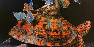 波特兰鹿角画廊展出了Lisa Ericson 的相关图片